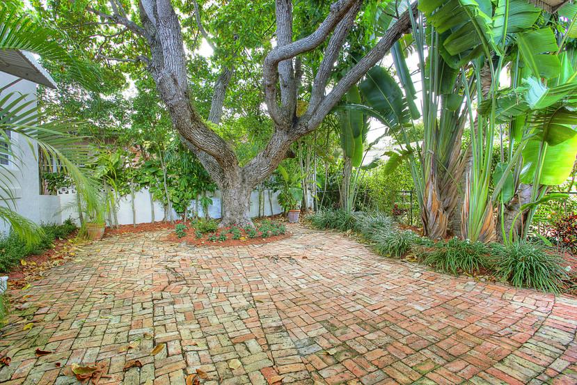 022-Backyard-1674014-small